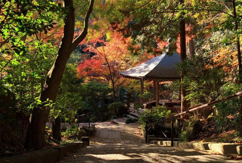 三滝寺の紅葉