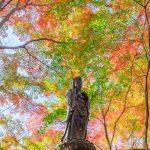 朝早く行くべし!三滝寺の素晴らしい紅葉!(広島市西区)
