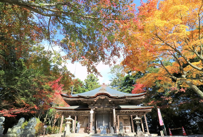 極楽寺の紅葉