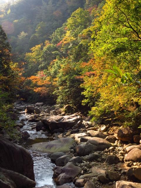 石ケ谷峡、紅葉