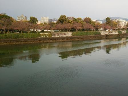 広島、平和記念公園の桜