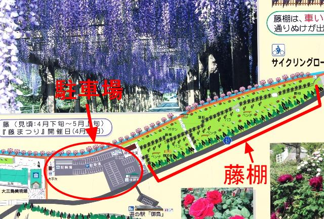 大三島藤公園マップ