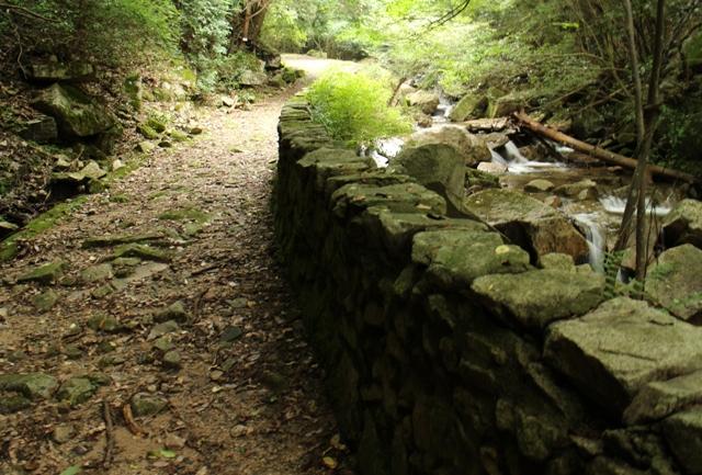 堂床山登山道は川沿い