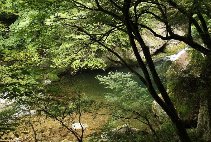 中津谷渓谷の美しい景色