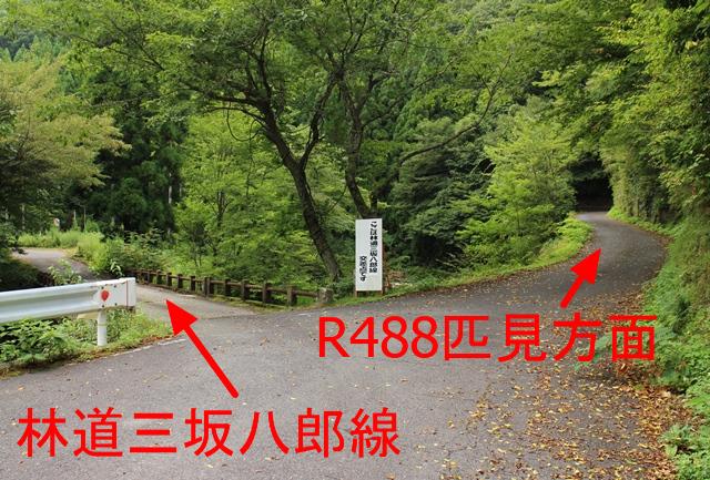 中津谷渓谷、林道三坂八郎線分岐