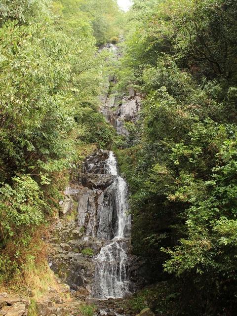 夏の常清滝