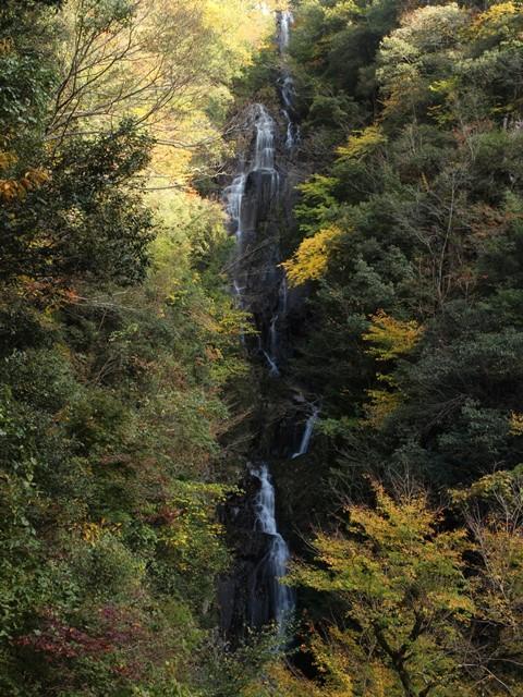 紅葉の常清滝を滝見台から望む