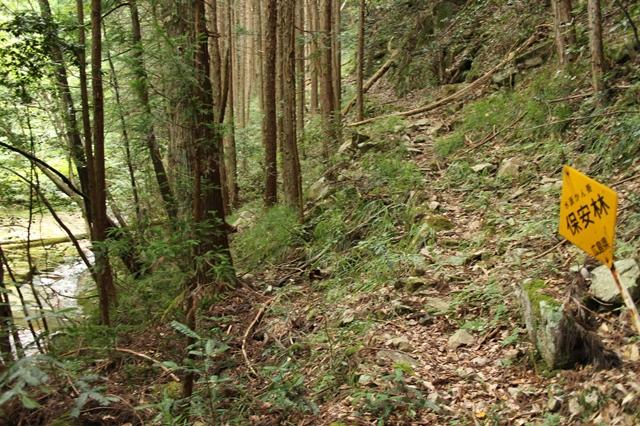 「龍頭の滝」への道のり