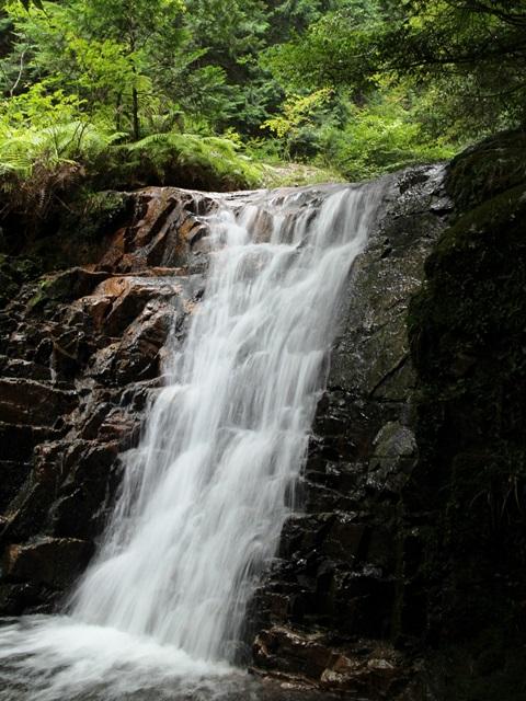 「龍頭の滝」の手前の小滝