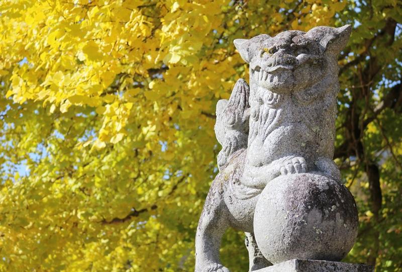 筒賀の大銀杏と狛犬
