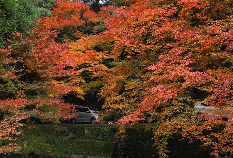 佛通寺の紅葉シーズンの渋滞