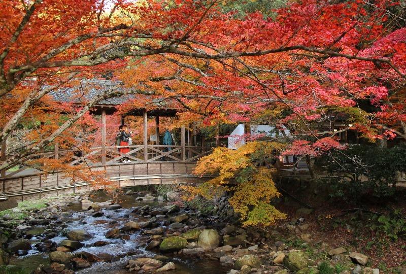 佛通寺、巨蟒橋と紅葉