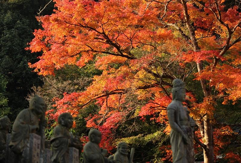 佛通寺、羅漢像と紅葉