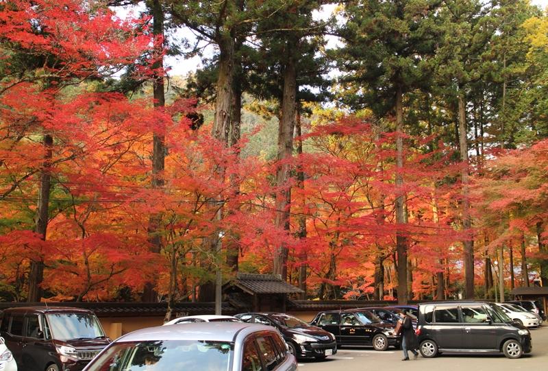 佛通寺、駐車場からの紅葉