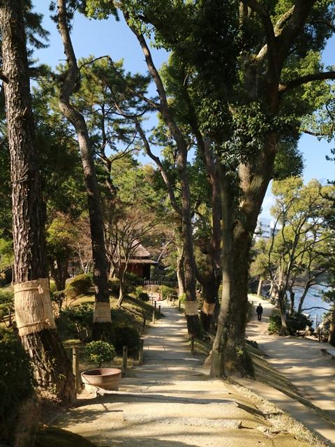 京橋川沿いの遊歩道