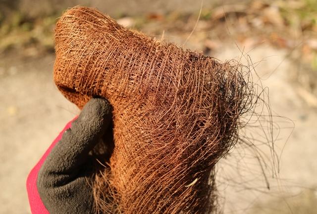 様々な用途で利用できるシュロの毛