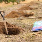 楽で早い穴掘り方法!スコップではなく鍬(くわ)で掘れ!!