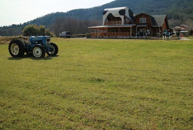 トムミルクファームの牧草地