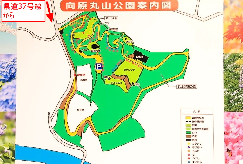 丸山公園案内図(マップ)