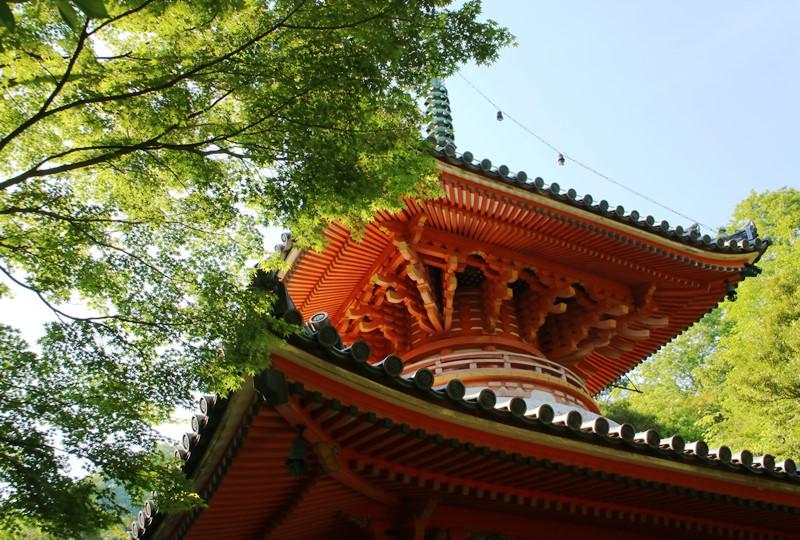 初夏、新緑の三滝寺