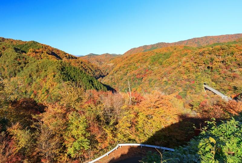 猪山展望台の紅葉(温井ダム)