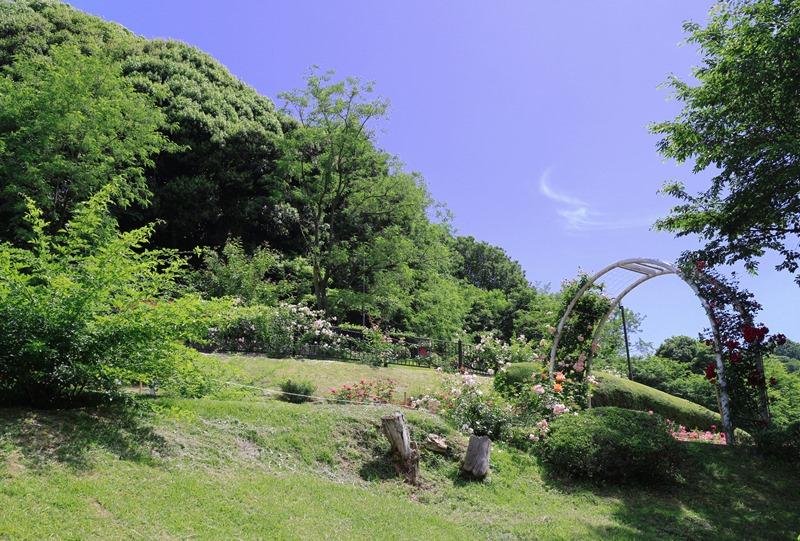 牛田総合公園『バラ園』の行き方