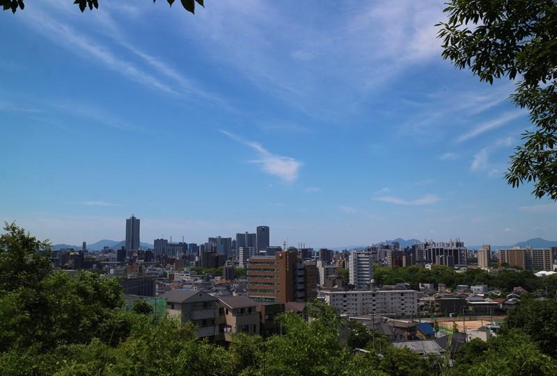 牛田総合公園『バラ園』少し上からの展望