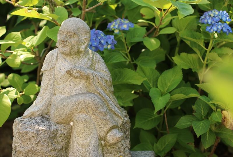 珍しい足を組んだ羅漢像とアジサイ