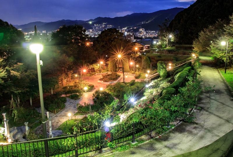 牛田総合公園、夜の牛田バラ園