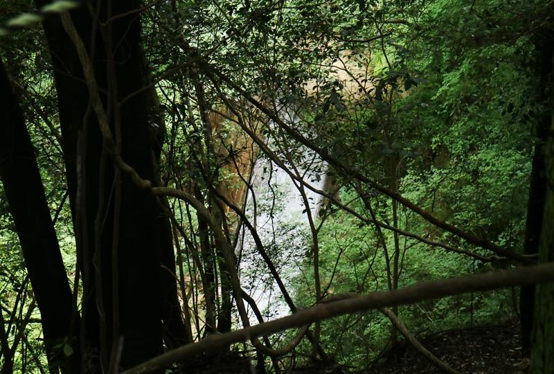 畑の谷大滝への道のり