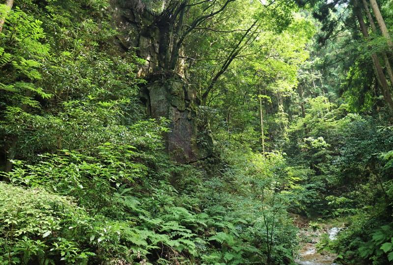 畑の谷大滝手前の屏風岩