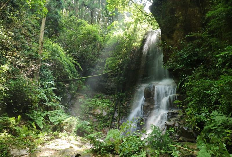 畑の谷大滝