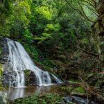 『明神滝』本多田集落の奥にひっそりと流れる名瀑(佐伯区湯来町)
