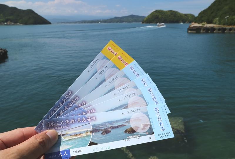 来島海峡急流観潮船のチケット