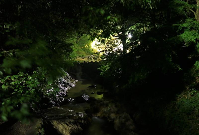 妹背の滝(雄滝)のライトアップ、幾千代橋から