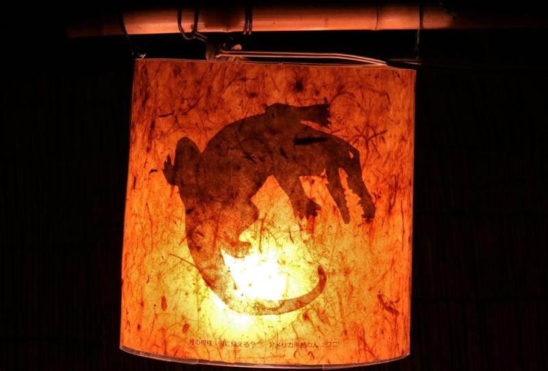 屋外展示場の月見草と提灯