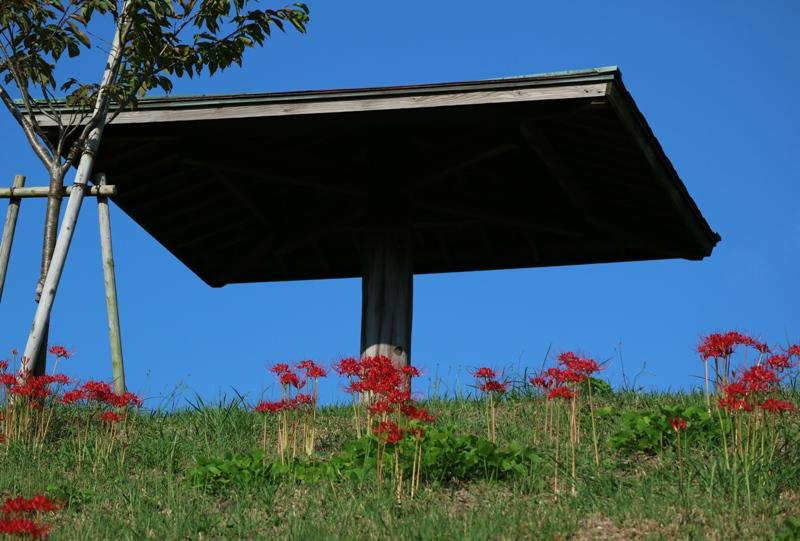 花みどり公園、展望台