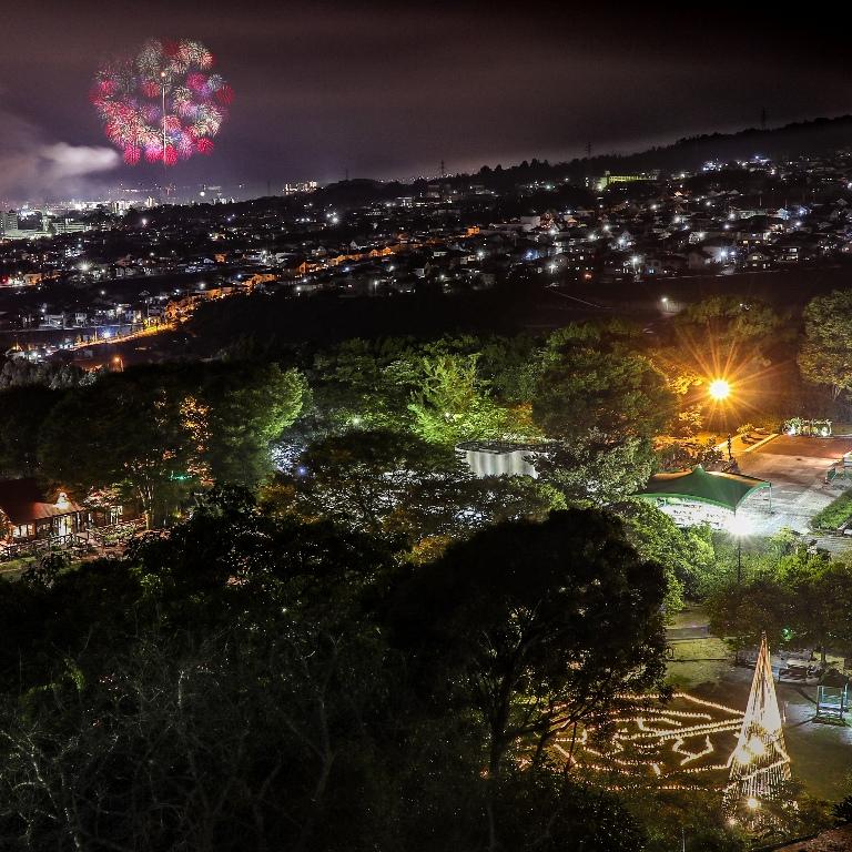 はつかいち花火大会を広島市植物公園から望む