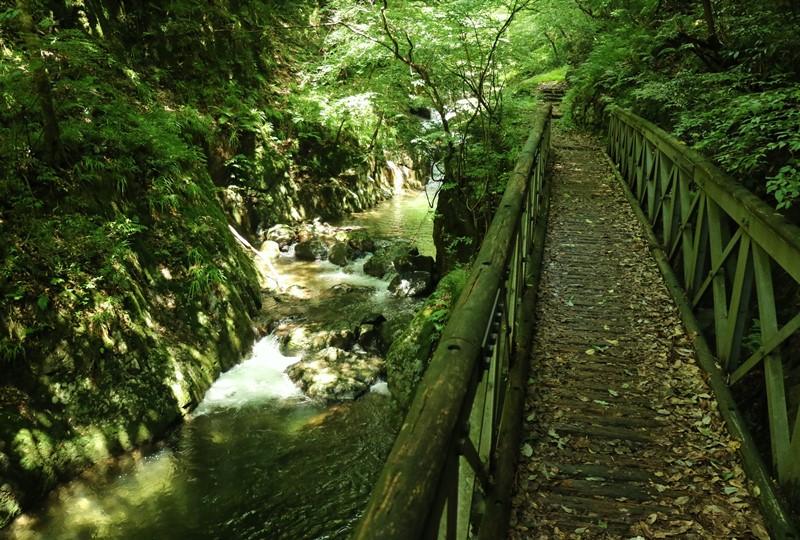 瀬戸の滝、遊歩道、一つ目の橋