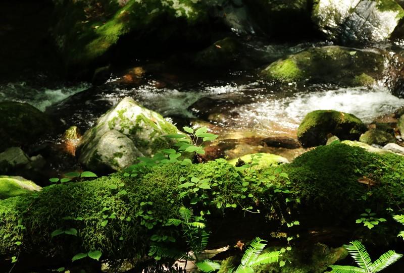 瀬戸の滝、遊歩道