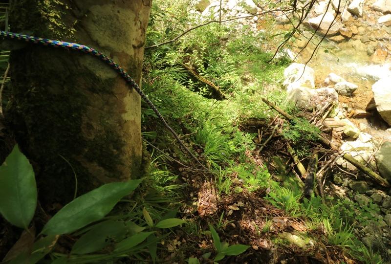 ザイルを使って「那須の滝」へと下降