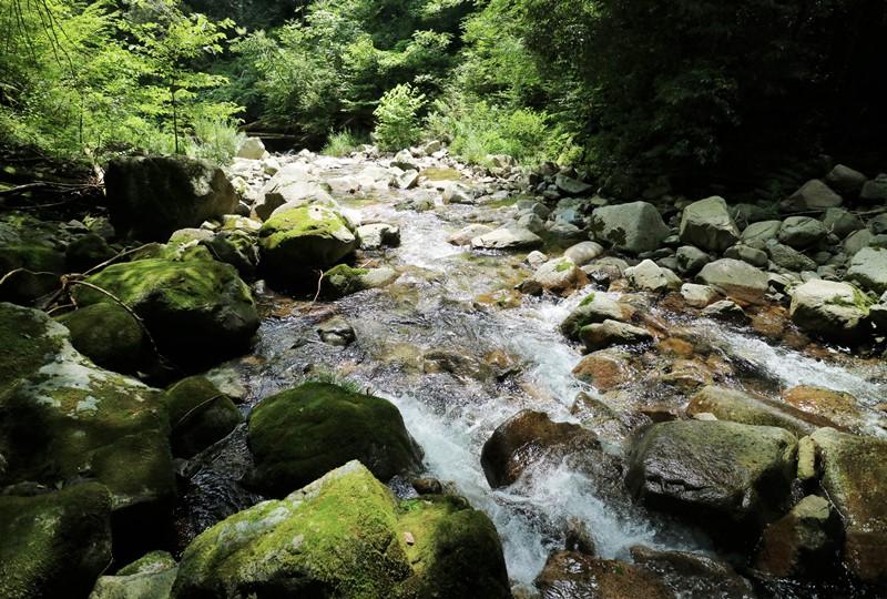 那須の滝から下流を望む