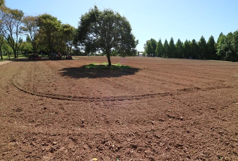 世羅高原農場、植え付け前の土地