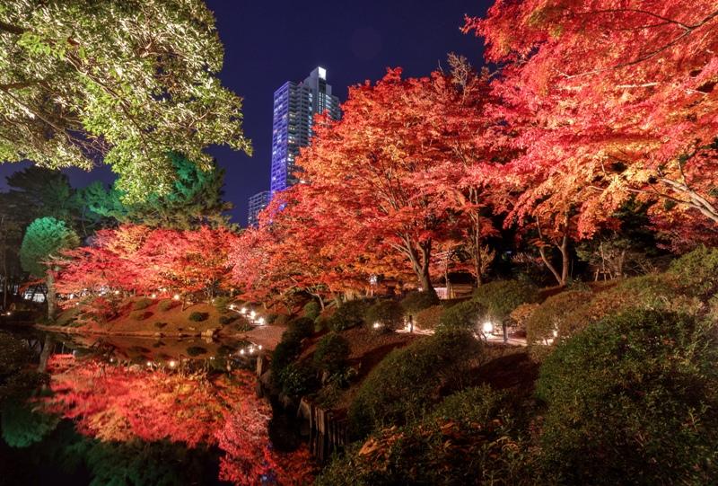 縮景園、紅葉ライトアップ(濯纓池のリフレクション)