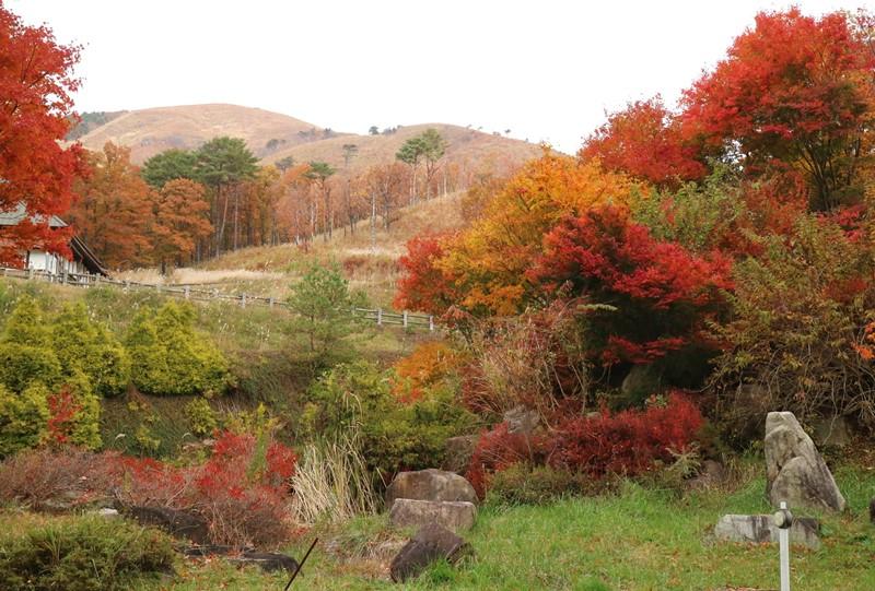 深入山の紅葉