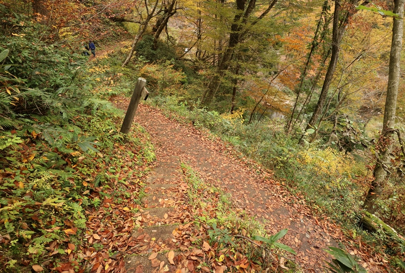 三段峡、三段滝へと向かう遊歩道の分岐