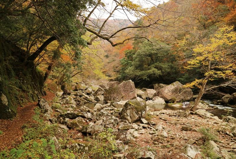 三段峡、三段滝へと向かう遊歩道の紅葉