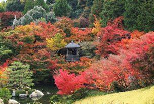 三景園の燃えるような紅葉