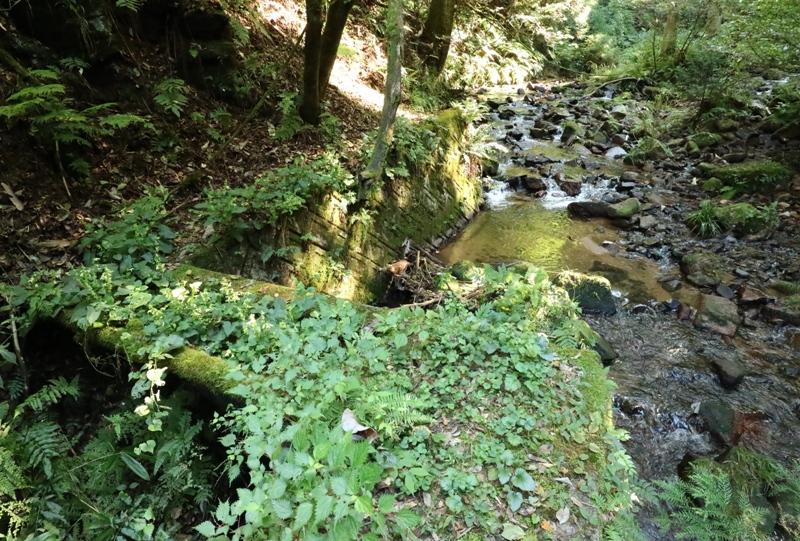 鬼の釜滝へと至る道のり