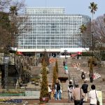 広島市植物公園の大温室にバオバブがやってきた!なんと国内最大!!